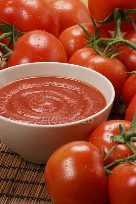 Домашній томатний соус в миску і свіжими помідорами в білий плита — стокове фото