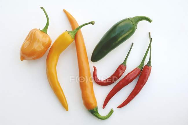 Red chillies on white background — Stock Photo