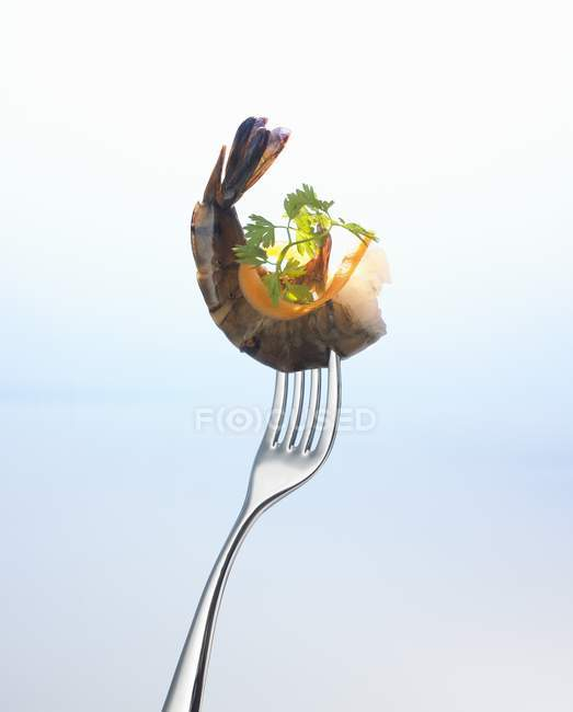 Closeup view of prawn with parsley and sliver of carrot on fork — Stock Photo