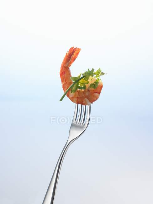 Closeup view of prawn and herbs on fork — Stock Photo