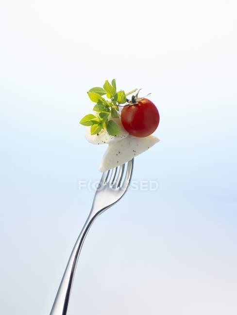 Mozzarella e tomate com manjericão em garfo — Fotografia de Stock