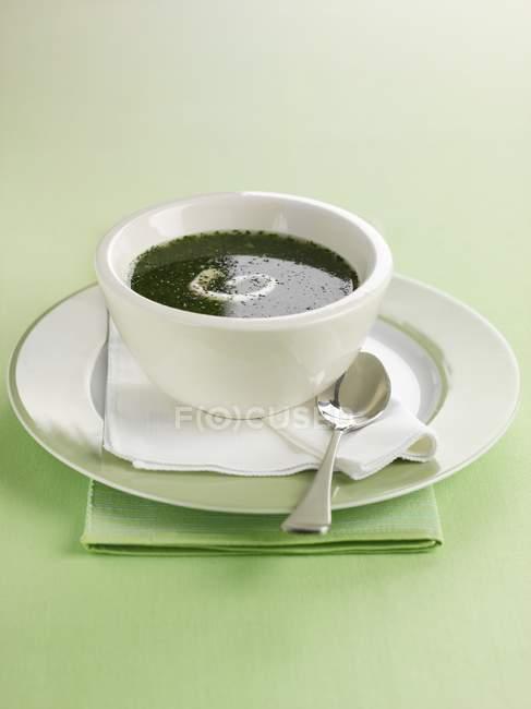 Watercress soup in white bowl — Stock Photo