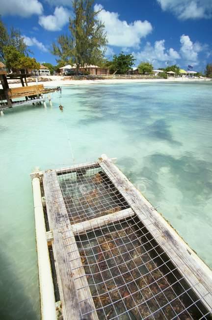 Pendant la journée vue du casier à homard près de l'île des Caraïbes — Photo de stock