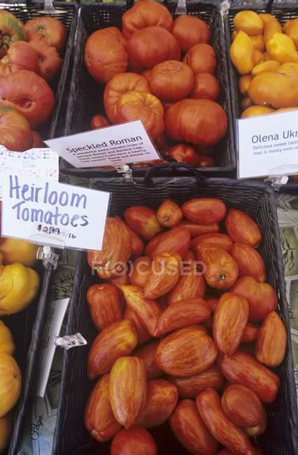 Cestas de tomates de la herencia - foto de stock