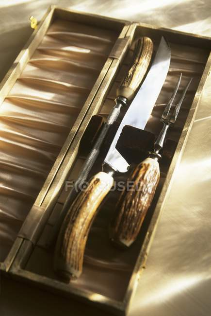 Closeup view of Staghorn carving set in a box — Stock Photo