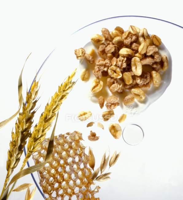 Мюслі та Пшеничні колоски — стокове фото