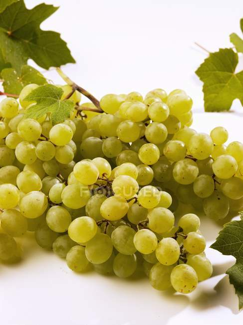 Bunch of green grapes — Stock Photo