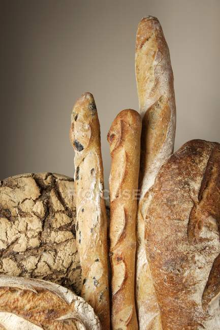 Loaves of bread and baguettes — Stock Photo