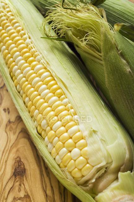 Corn cobs with husks — Stock Photo
