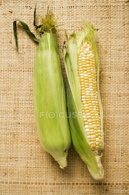 Two corn cobs with husks — Stock Photo
