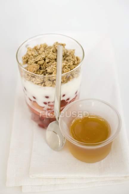Geschichtete Dessert mit Joghurt und Müsli — Stockfoto