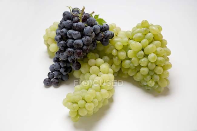 Пучка зеленого та чорного винограду — стокове фото