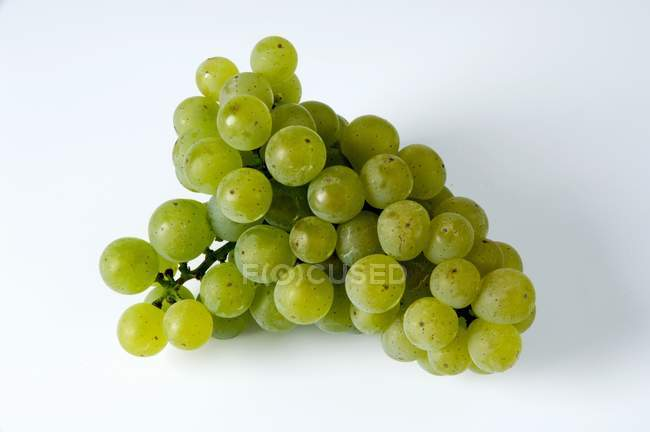 Fresh ripe green grapes — Stock Photo
