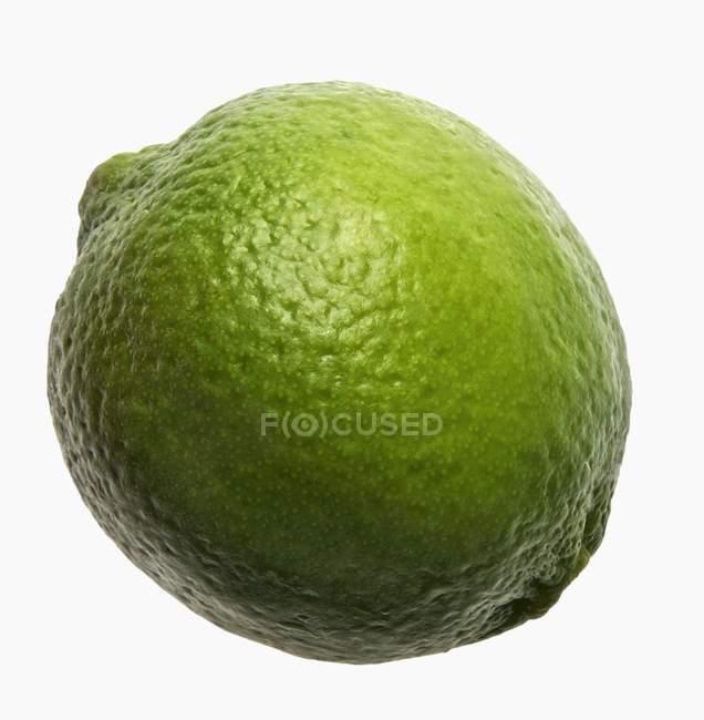 Cal verde entera - foto de stock
