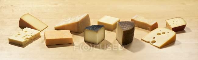 Différents types de fromage à pâte dure — Photo de stock