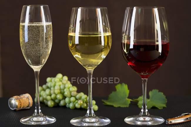 Óculos com champanhe, vinho tinto e branco — Fotografia de Stock