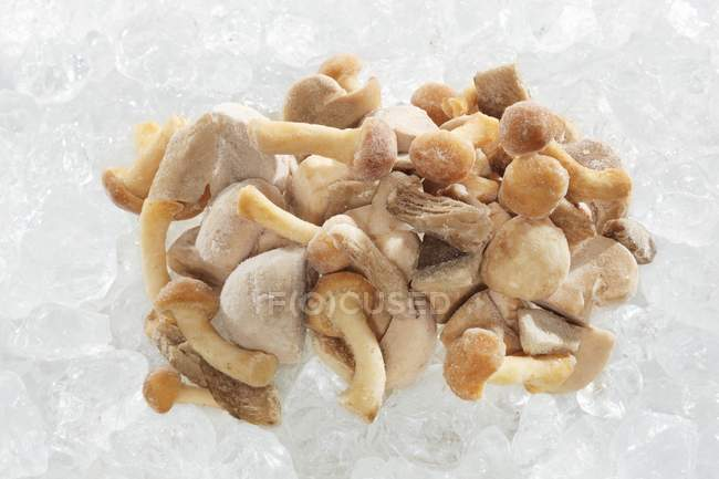 Frozen mushrooms, close-up — Stock Photo