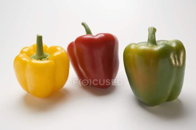 Peperoni freschi colorati — Foto stock