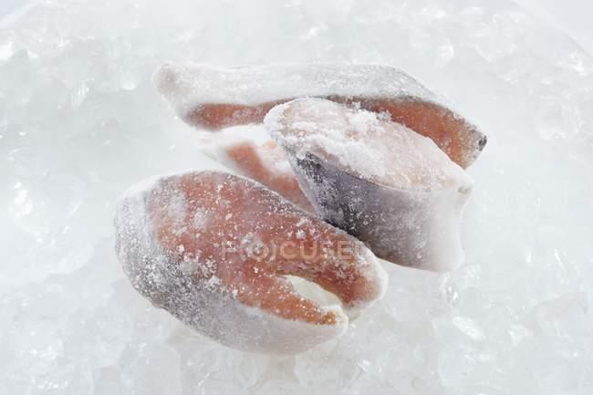 Замороженные стейки лосося — стоковое фото