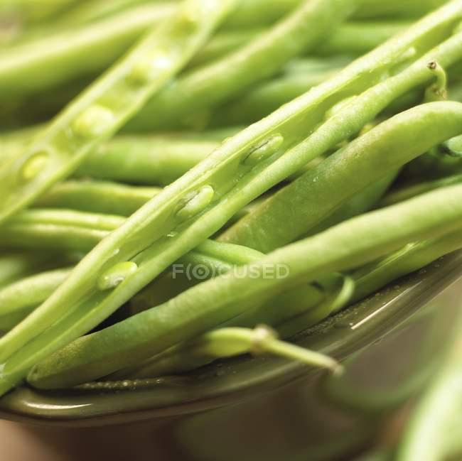 Свіжі зелені боби в мисці. — стокове фото