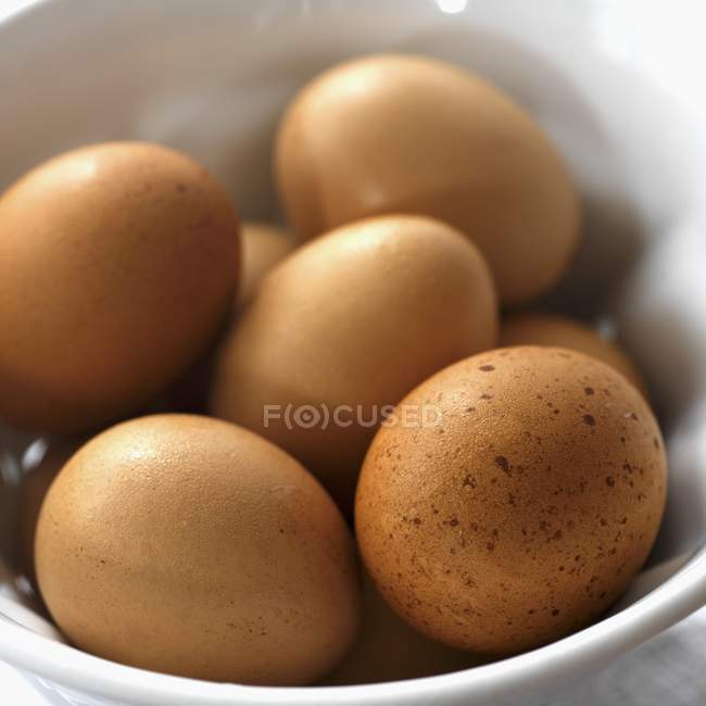 Œufs bruns frais — Photo de stock