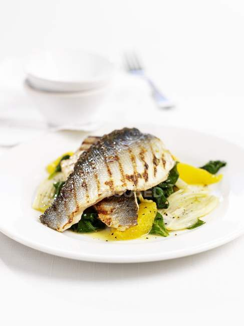 Grilled sea bass on spinach with oranges  on white plate — Stock Photo