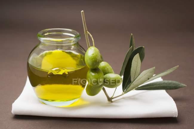 Веточка с кувшином оливкового масла — стоковое фото