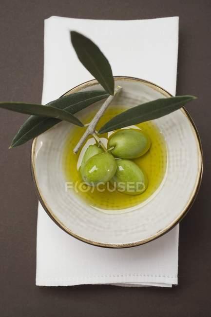 Зеленые оливки на ветку в миске — стоковое фото