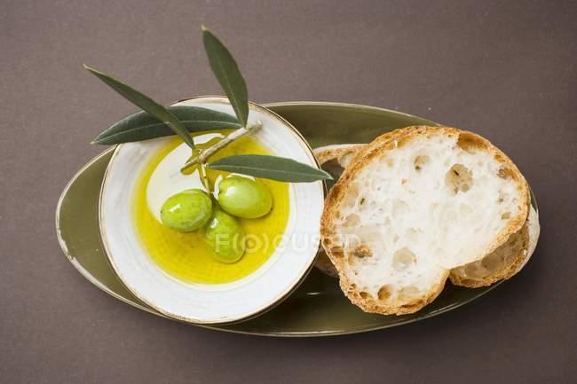 Зеленые оливки на ветку в оливковом масле — стоковое фото