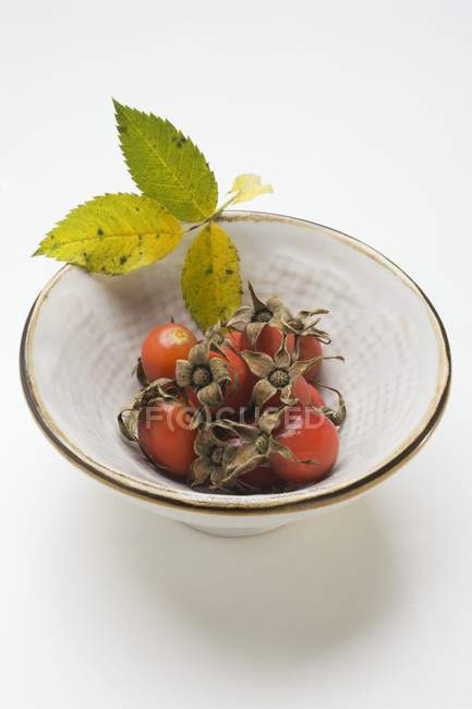 Closeup view of rose hips and leaves in bowl — Stock Photo