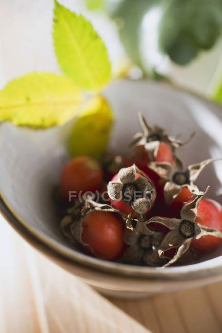 Closeup view of fresh rose hips in bowl with leaves — Stock Photo