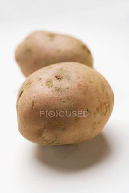 Zwei rohe rote Kartoffeln — Stockfoto