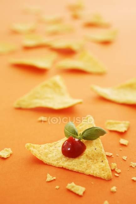 Tacos con salsa de tomate y albahaca - foto de stock