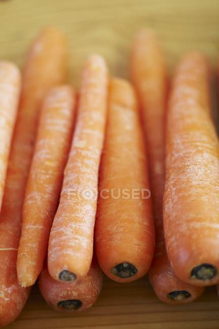 Zanahorias frescas maduras - foto de stock