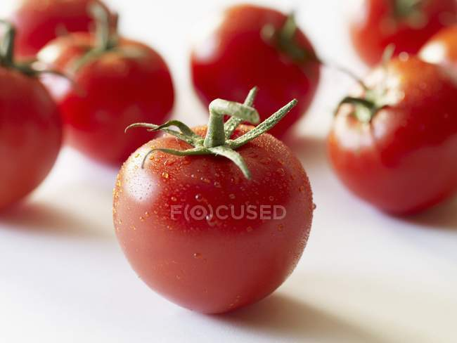 Fresh Red Tomatoes — Stock Photo