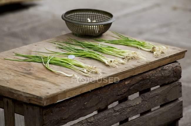 Cipollotti sdraiato sul tavolo in legno — Foto stock
