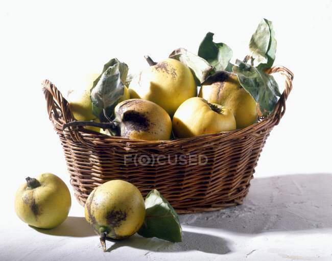 Quinces in small basket — Stock Photo