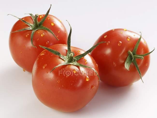 Три помідори з крапельками води — стокове фото