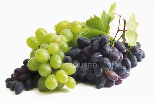 Чорний і зелений виноград — стокове фото