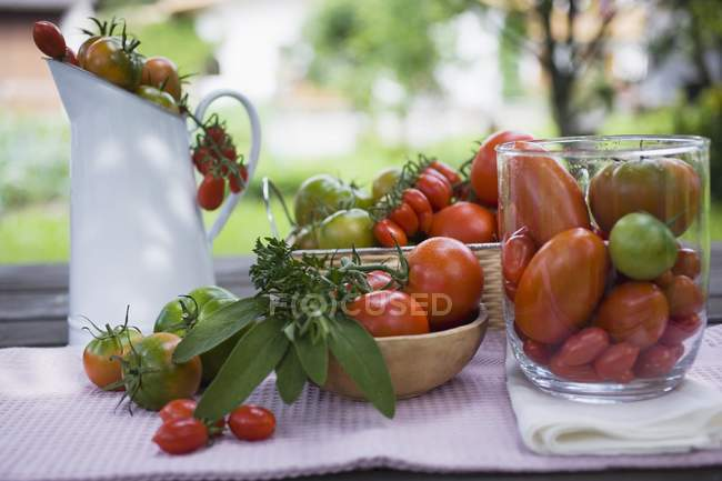 Various types of tomatoes — Stock Photo