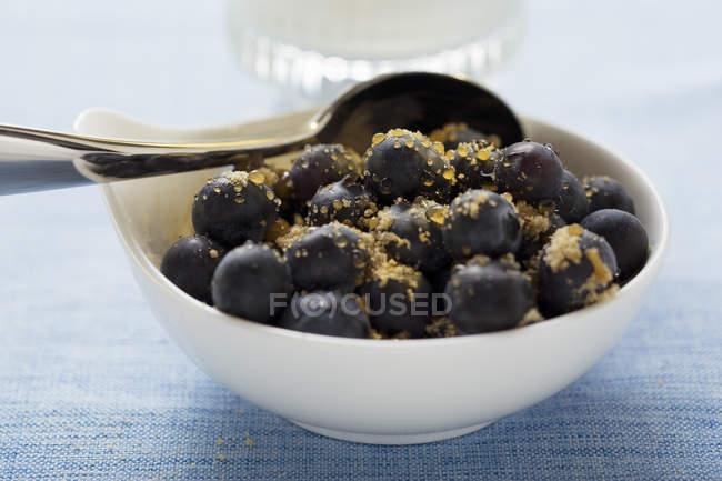 Bleuets, saupoudrées de sucre de canne — Photo de stock