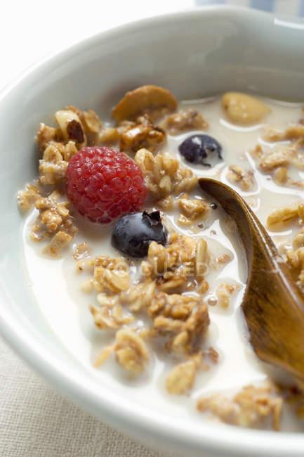Crunchy muesli with berries — Stock Photo