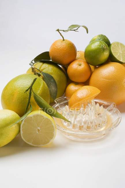 Assorted citrus fruit with squeezer — Stock Photo