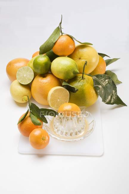 Assorted citrus fruits with squeezer — Stock Photo