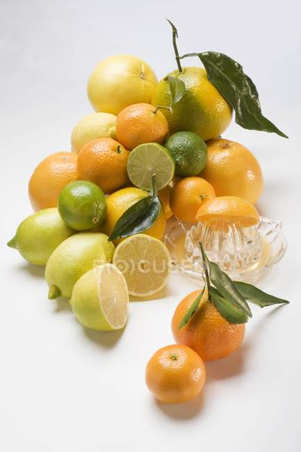 Assorted citrus fruits in heap — Stock Photo
