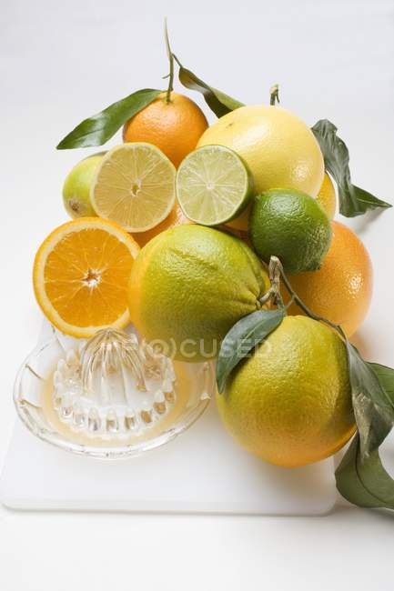 Assorted citrus fruits and squeezer — Stock Photo