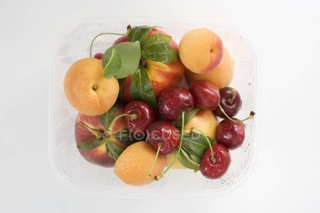 Abricots et cerises dans une barquette en plastique — Photo de stock