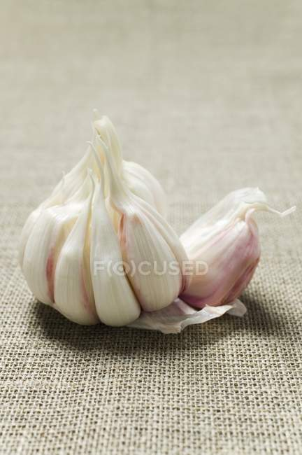 Uncoverd луковица чеснок — стоковое фото
