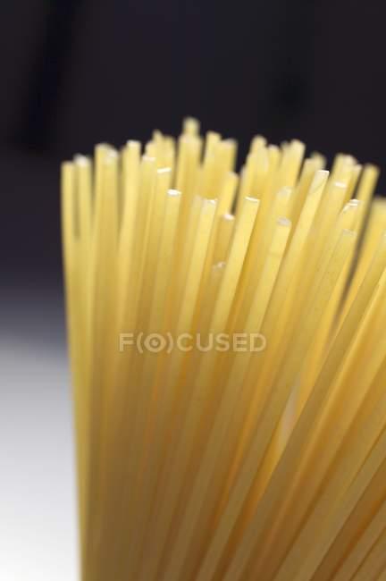 Spaghettis secs bruts — Photo de stock