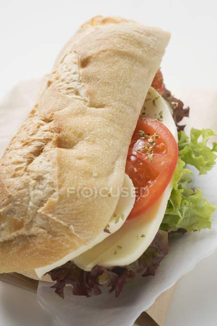 Baguette roll filled with mozzarella — Stock Photo